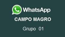 Whatsapp Campo Magro